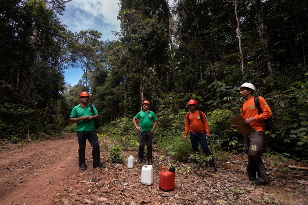 Fundo bilionário para preservação da Amazônia corre risco? Entenda o impasse